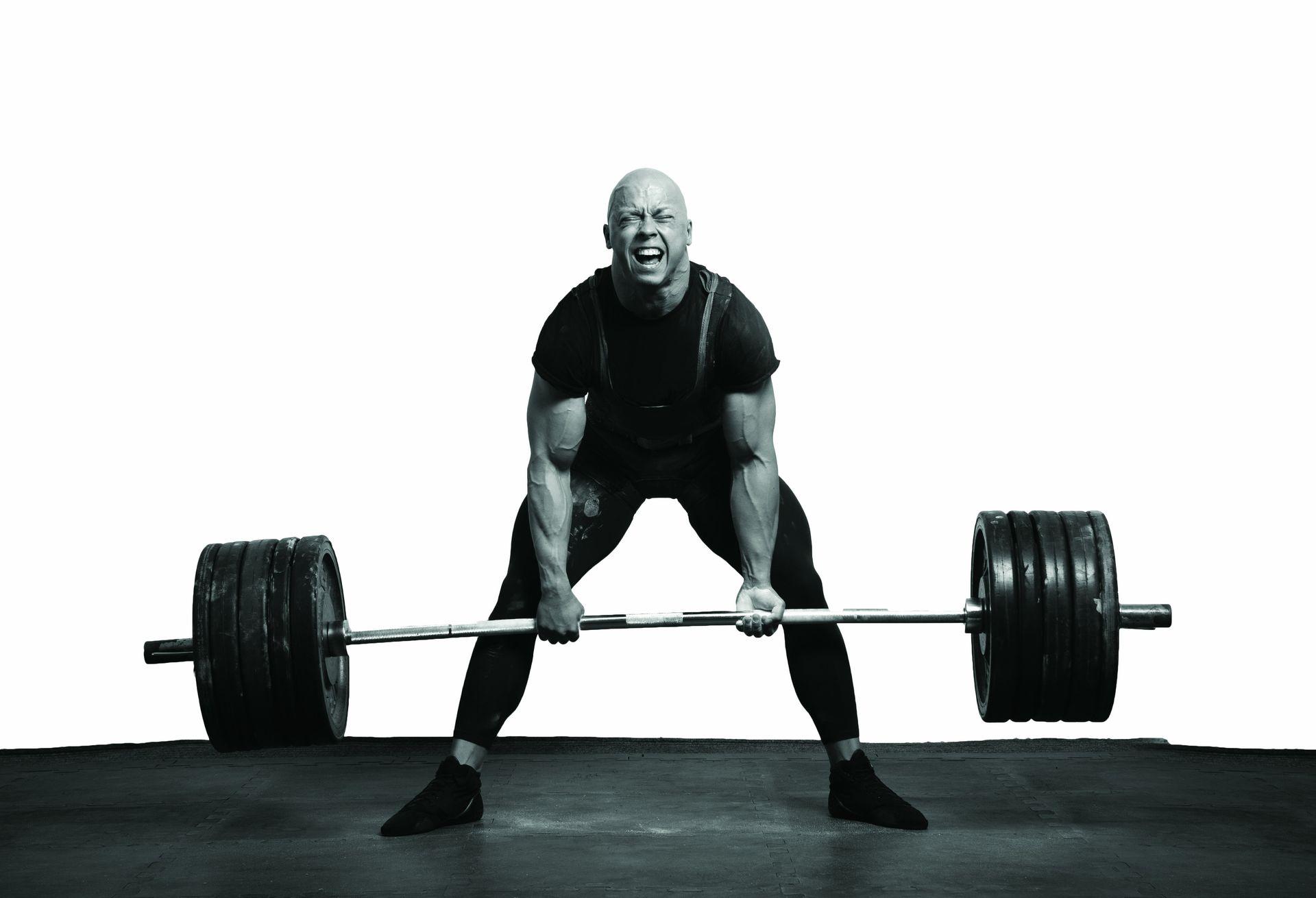 fitness-(6)-fitness