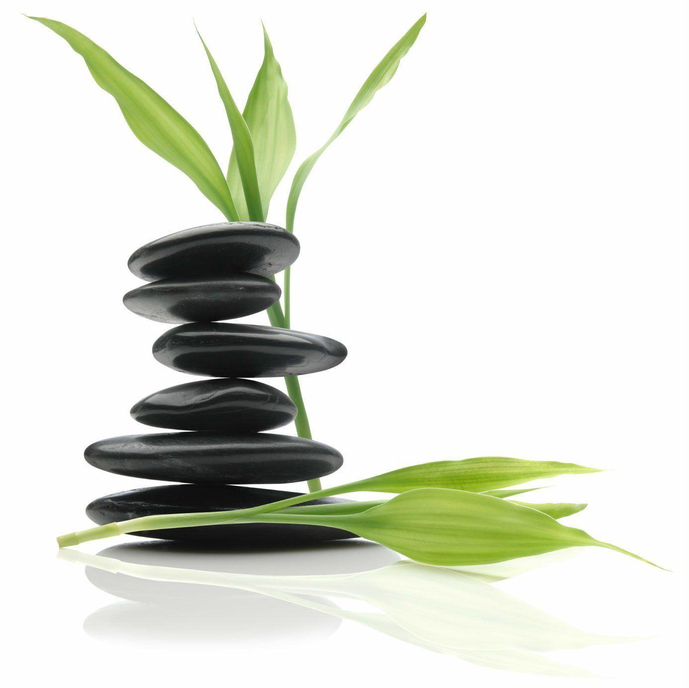 wellness_program-health